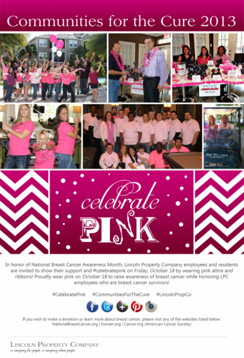 Communities for the Cure 2013 NEWS