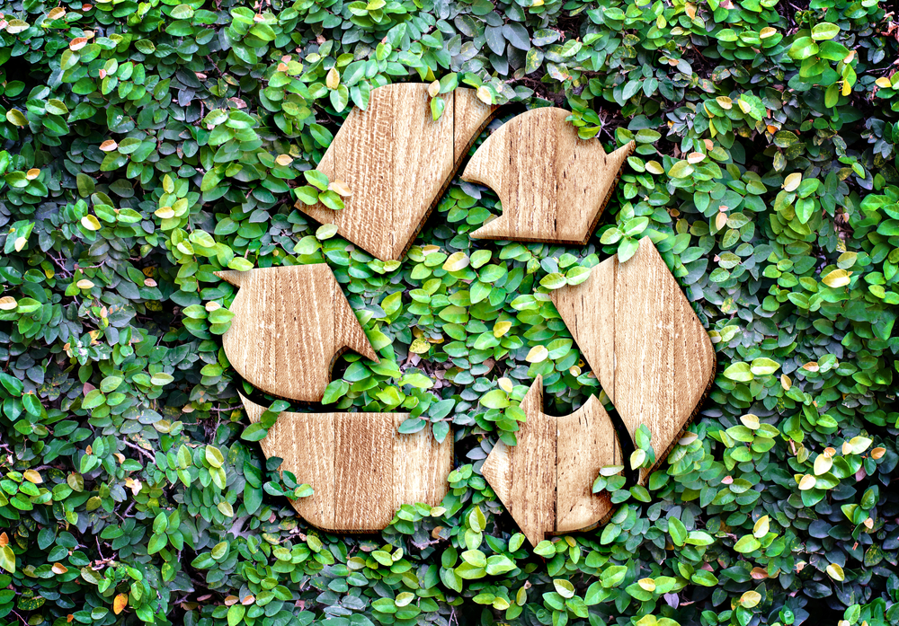 recycle go green