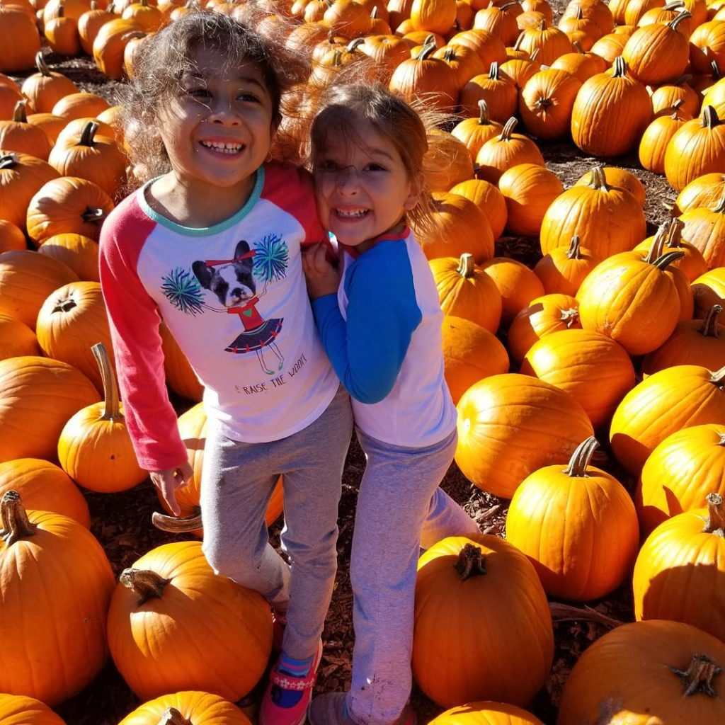 kids in a pumpkin patch