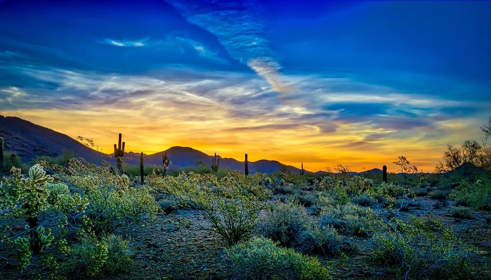views in Scottsdale