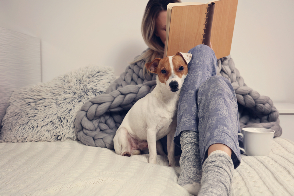 reading a book with a dog