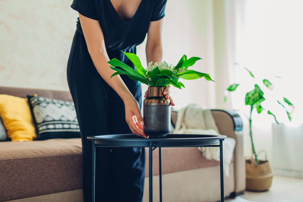 setting a plant down on a table in an apartment