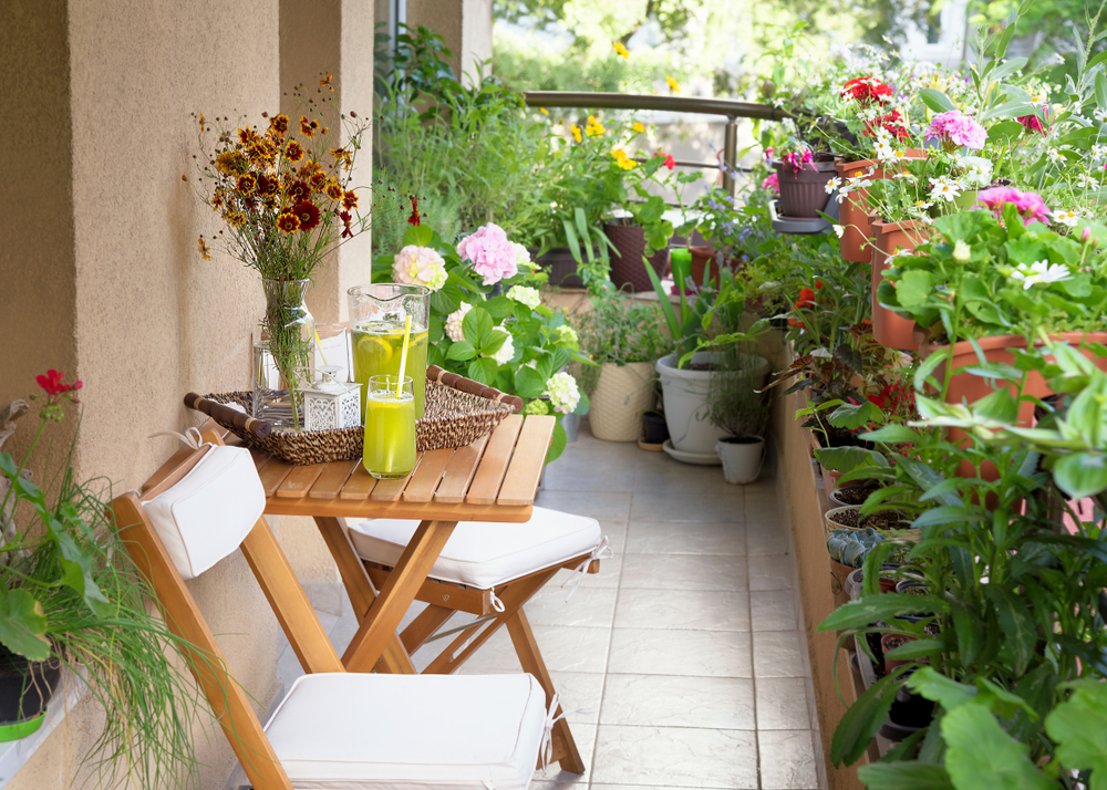 a balcony with plants | patio themes