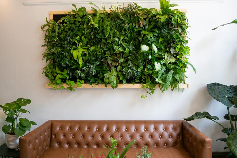 plant wall | unique apartment plants